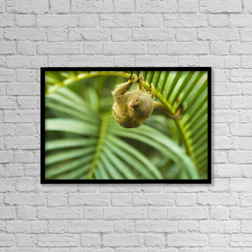 "Printscapes Wall Art: 18"" x 12"" Canvas Print With Black Frame - Animals by Brian Guzzetti"