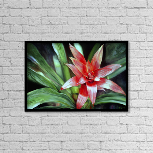 "Printscapes Wall Art: 18"" x 12"" Canvas Print With Black Frame - Single Red Bromeliad Flower. Oil Painting by Fay Biegun"