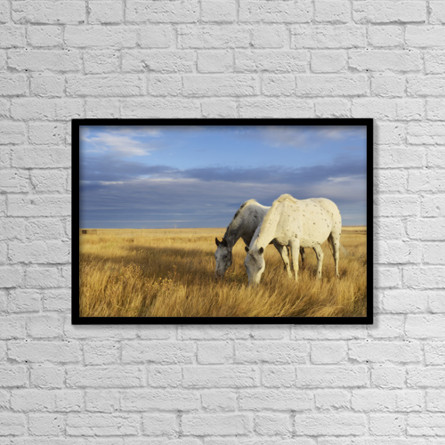 """Printscapes Wall Art: 18"""" x 12"""" Canvas Print With Black Frame - Animals by Peter Carroll"""