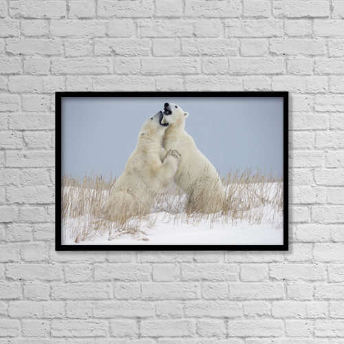 """Printscapes Wall Art: 18"""" x 12"""" Canvas Print With Black Frame - Animals by Robert Postma"""