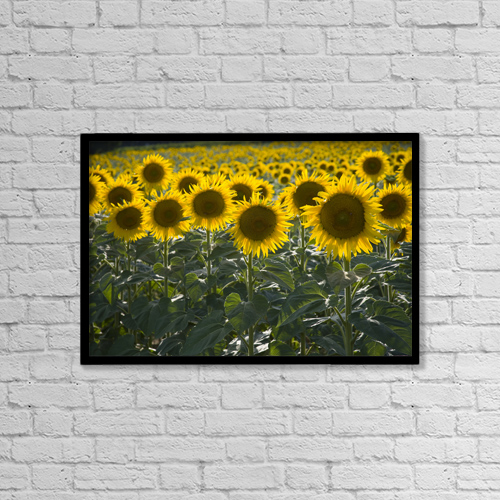 "Printscapes Wall Art: 18"" x 12"" Canvas Print With Black Frame - Scenic by Carlos Sanchez Pereyra"