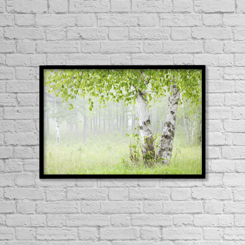 "Printscapes Wall Art: 18"" x 12"" Canvas Print With Black Frame - Birch trees in fog by Susan Dykstra"