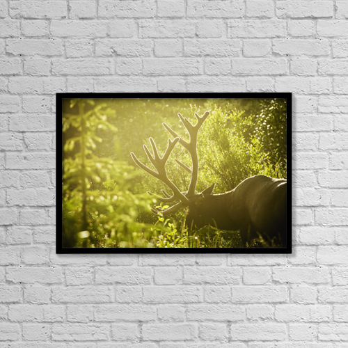 "Printscapes Wall Art: 18"" x 12"" Canvas Print With Black Frame - Animals by Joel Koop"