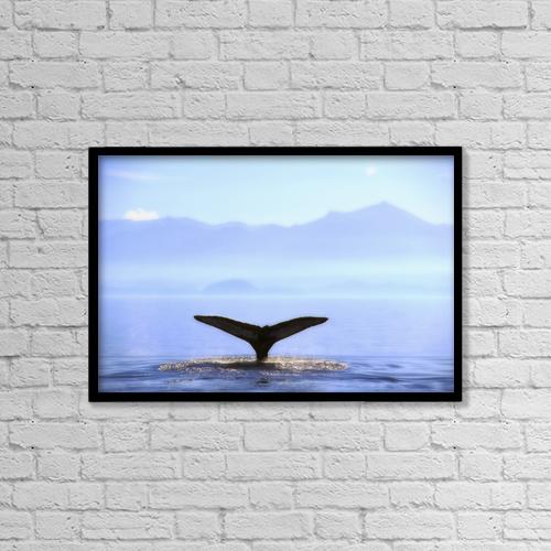 "Printscapes Wall Art: 18"" x 12"" Canvas Print With Black Frame - Marine Life by Thomas Kitchin & Victoria Hurst"