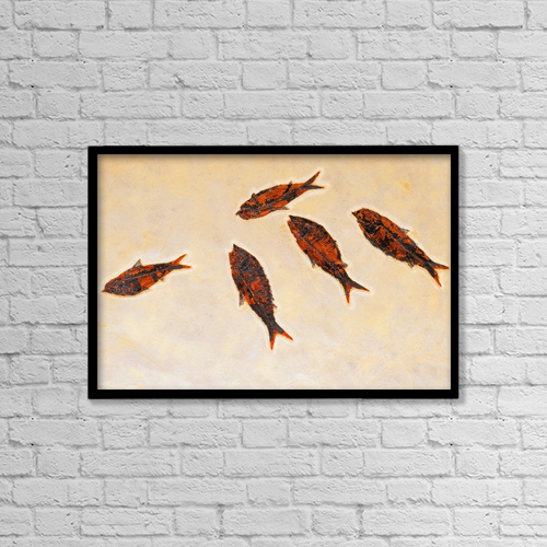 "Printscapes Wall Art: 18"" x 12"" Canvas Print With Black Frame - Fossilized fish by Thomas Kitchin & Victoria Hurst"