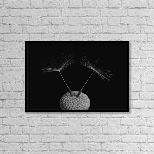 "Printscapes Wall Art: 18"" x 12"" Canvas Print With Black Frame - Dandelion Seeds; Waterloo, Quebec, Canada by David Chapman"