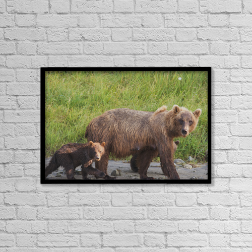 """Printscapes Wall Art: 18"""" x 12"""" Canvas Print With Black Frame - Animals by Lorraine Logan"""