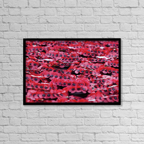 """Printscapes Wall Art: 18"""" x 12"""" Canvas Print With Black Frame - Poppies At Cenotaph On Remembrance Sunday by Doug McKinlay"""