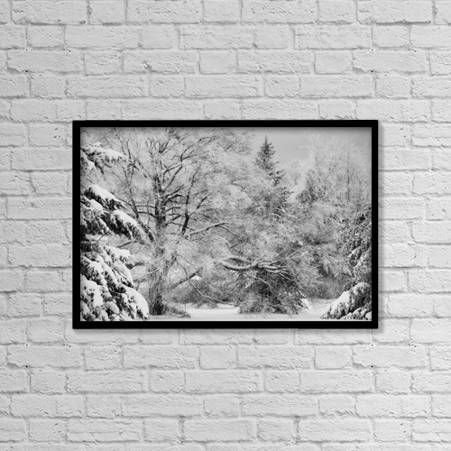 """Printscapes Wall Art: 18"""" x 12"""" Canvas Print With Black Frame - Canadian Winter by David Chapman"""
