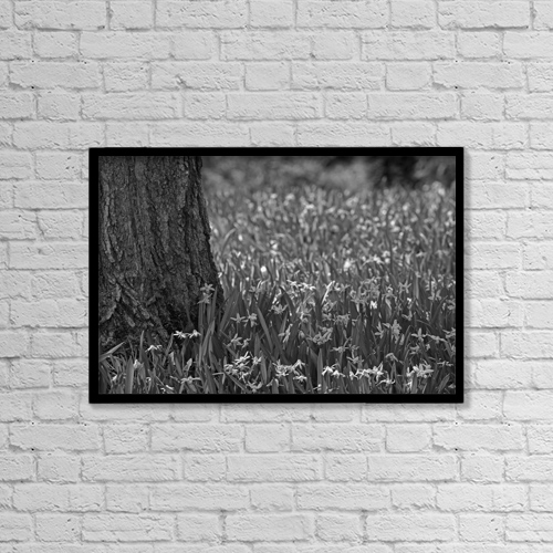 "Printscapes Wall Art: 18"" x 12"" Canvas Print With Black Frame - Spring Flowers; Waterloo, Quebec, Canada by David Chapman"