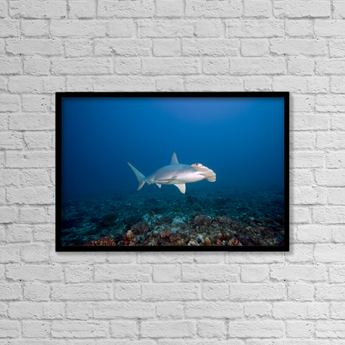"Printscapes Wall Art: 18"" x 12"" Canvas Print With Black Frame - Creative Imagery by Dave Fleetham"