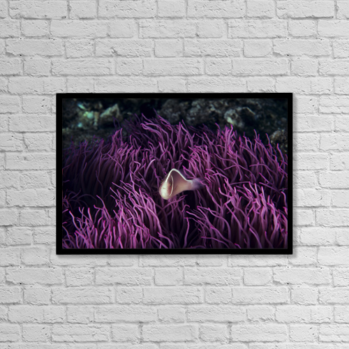 "Printscapes Wall Art: 18"" x 12"" Canvas Print With Black Frame - Creative Imagery by Ed Robinson"