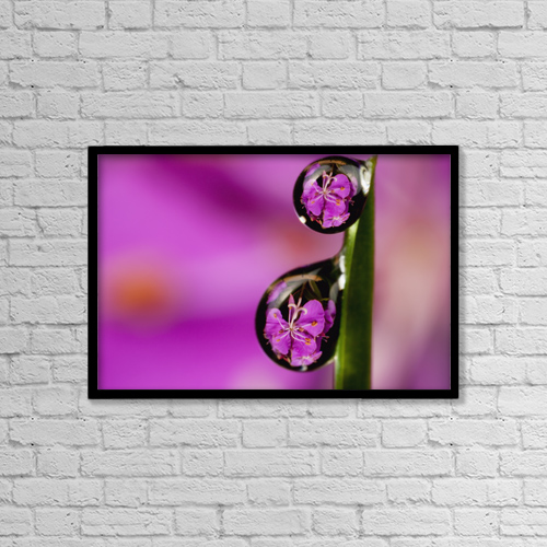 "Printscapes Wall Art: 18"" x 12"" Canvas Print With Black Frame - Flowers by Marion Owen"