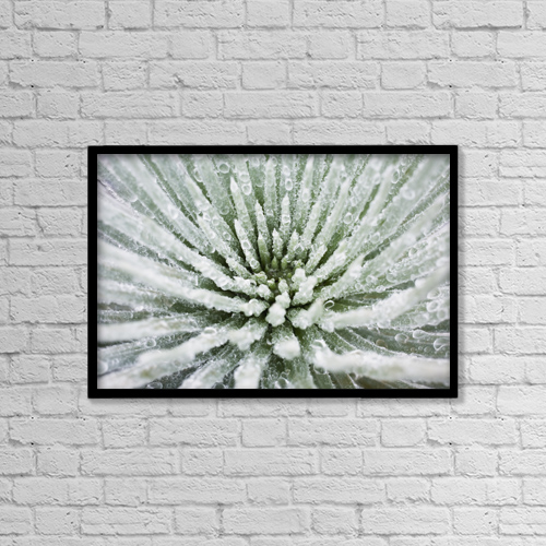 """Printscapes Wall Art: 18"""" x 12"""" Canvas Print With Black Frame - Nature by Charmian Vistaunet"""