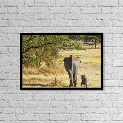 "Printscapes Wall Art: 18"" x 12"" Canvas Print With Black Frame - An African Elephant With It's Young; Tanzania by Cathy Hart"