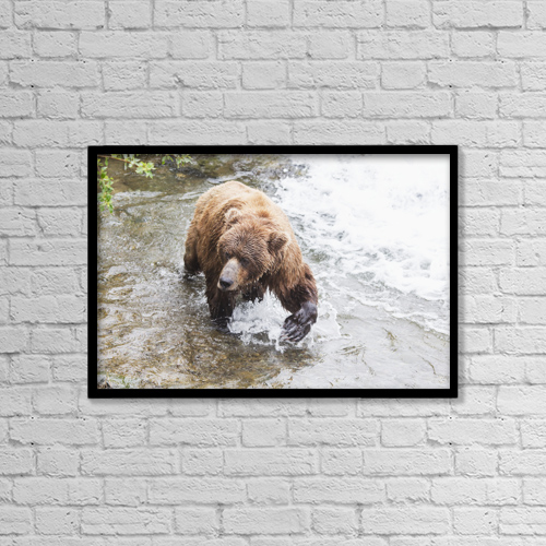 """Printscapes Wall Art: 18"""" x 12"""" Canvas Print With Black Frame - Animals by Lucas Payne"""