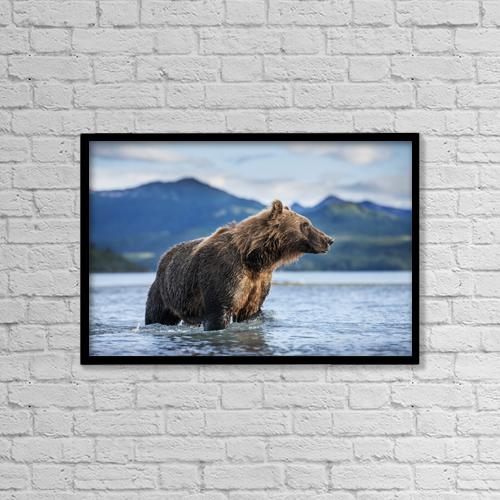 "Printscapes Wall Art: 18"" x 12"" Canvas Print With Black Frame - Animals by Paul Souders"