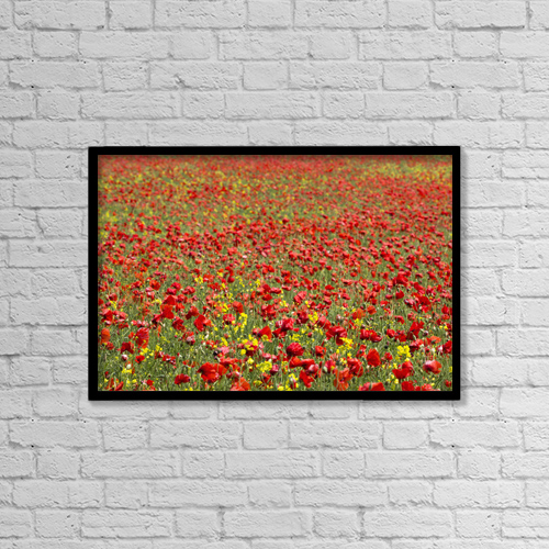 "Printscapes Wall Art: 18"" x 12"" Canvas Print With Black Frame - Flowers by John Short"