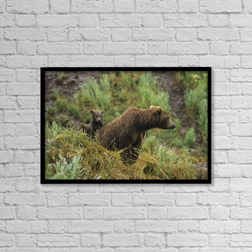 "Printscapes Wall Art: 18"" x 12"" Canvas Print With Black Frame - Animals by Gary Schultz"
