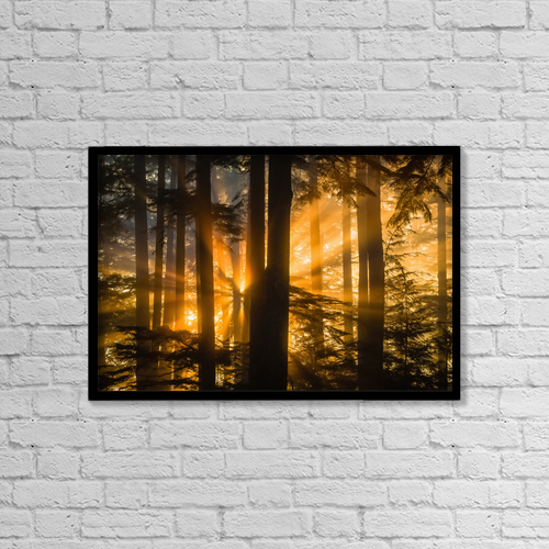 "Printscapes Wall Art: 18"" x 12"" Canvas Print With Black Frame - Nature by John Hyde"