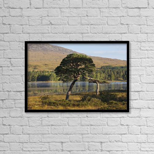 "Printscapes Wall Art: 18"" x 12"" Canvas Print With Black Frame - Rannoch Moor; Argyll, Highlands, Scotland by Carl Bruemmer"