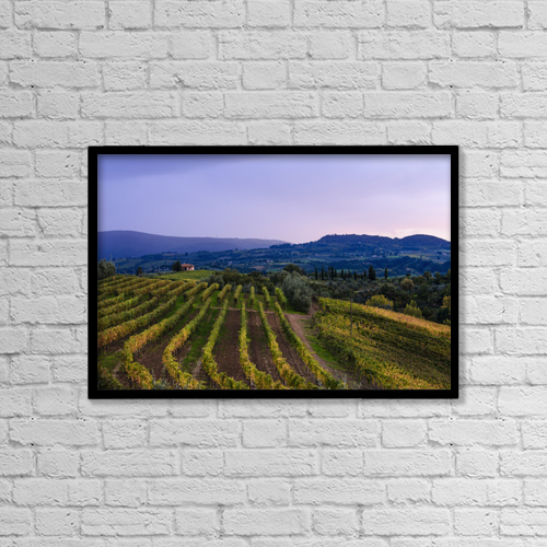 "Printscapes Wall Art: 18"" x 12"" Canvas Print With Black Frame - Wine Grape Vineyard, Near Ulignano by Yves Marcoux"