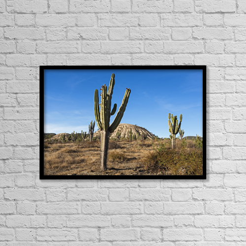 "Printscapes Wall Art: 18"" x 12"" Canvas Print With Black Frame - Landscape East Of Comarapa by Carl Bruemmer"