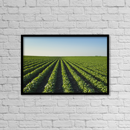 "Printscapes Wall Art: 18"" x 12"" Canvas Print With Black Frame - Agriculture by Scott Sinklier"