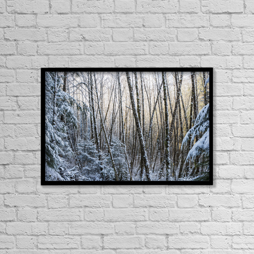 "Printscapes Wall Art: 18"" x 12"" Canvas Print With Black Frame - Snow Falls On The Alders by Robert L. Potts"