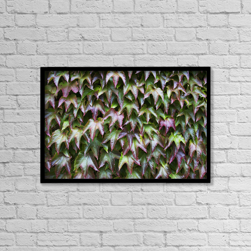 """Printscapes Wall Art: 18"""" x 12"""" Canvas Print With Black Frame - Foliage With Red And Green Leaves by John Short"""