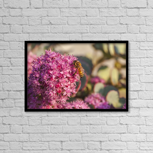 "Printscapes Wall Art: 18"" x 12"" Canvas Print With Black Frame - Animals by Laura Berman"