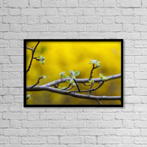 "Printscapes Wall Art: 18"" x 12"" Canvas Print With Black Frame - Nature by Laura Berman"