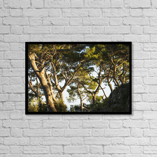 "Printscapes Wall Art: 18"" x 12"" Canvas Print With Black Frame - Trees And Blue Sky by Yves Marcoux"