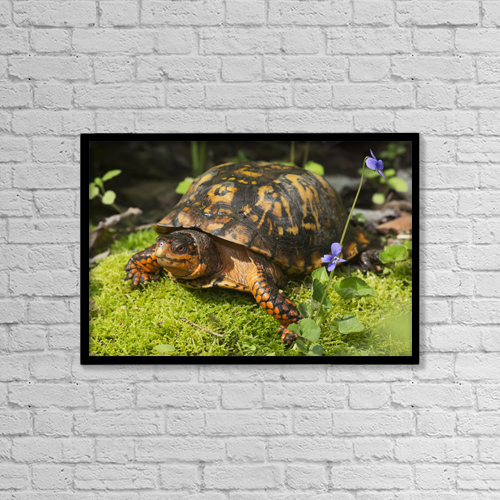 "Printscapes Wall Art: 18"" x 12"" Canvas Print With Black Frame - Animals by Lynn Stone"