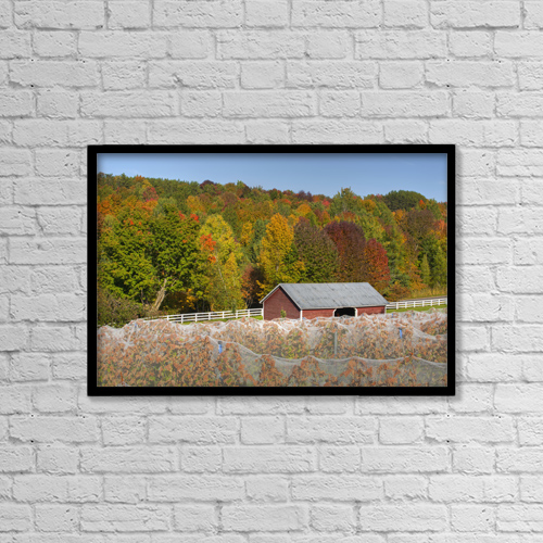 "Printscapes Wall Art: 18"" x 12"" Canvas Print With Black Frame - Agriculture by David Chapman"