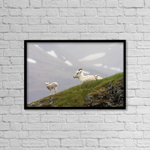 "Printscapes Wall Art: 18"" x 12"" Canvas Print With Black Frame - Animals by Alissa Crandall"
