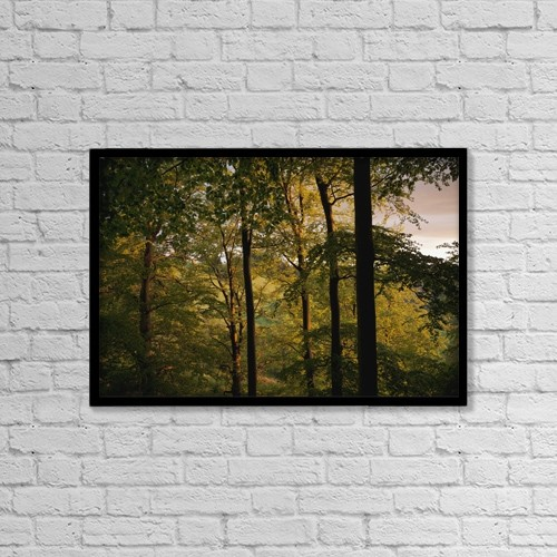 "Printscapes Wall Art: 18"" x 12"" Canvas Print With Black Frame - Beech Trees Near St by Carl Bruemmer"