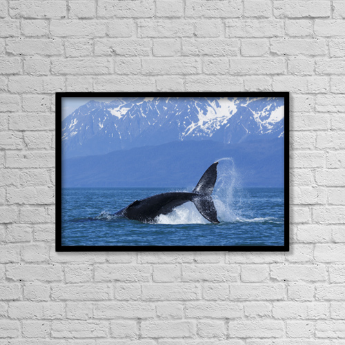 """Printscapes Wall Art: 18"""" x 12"""" Canvas Print With Black Frame - Marine Life by John Hyde"""