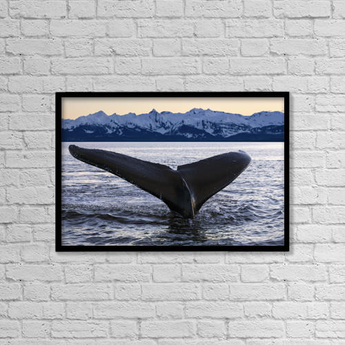 "Printscapes Wall Art: 18"" x 12"" Canvas Print With Black Frame - Marine Life by John Hyde"