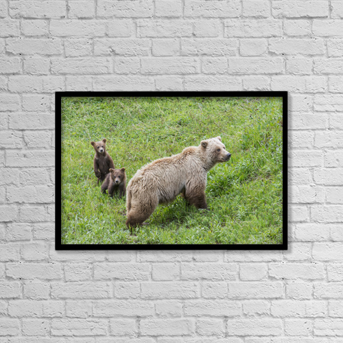 "Printscapes Wall Art: 18"" x 12"" Canvas Print With Black Frame - Animals by Cathy Hart"
