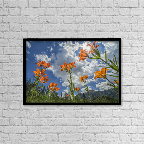 """Printscapes Wall Art: 18"""" x 12"""" Canvas Print With Black Frame - Flowers by Robert Postma"""
