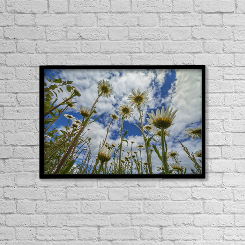 "Printscapes Wall Art: 18"" x 12"" Canvas Print With Black Frame - Flowers by Robert Postma"