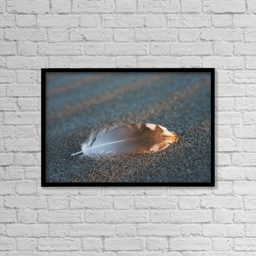 "Printscapes Wall Art: 18"" x 12"" Canvas Print With Black Frame - Gull Feathers Are Found On A Beach by Robert L. Potts"