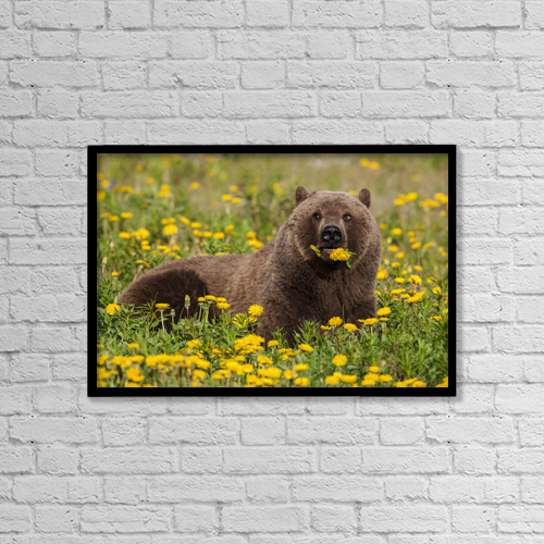 "Printscapes Wall Art: 18"" x 12"" Canvas Print With Black Frame - Creative Imagery by John Hyde"