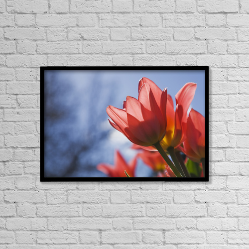 "Printscapes Wall Art: 18"" x 12"" Canvas Print With Black Frame - Flowers by Perry Mastrovito"