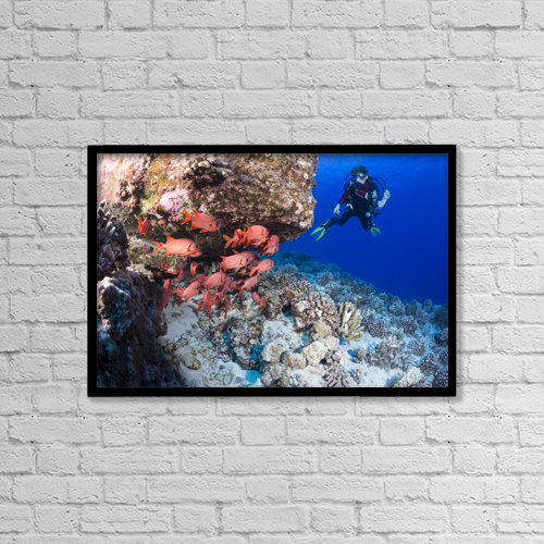 """Printscapes Wall Art: 18"""" x 12"""" Canvas Print With Black Frame - Lifestyle by Dave Fleetham"""
