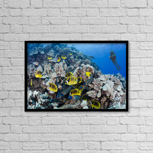 "Printscapes Wall Art: 18"" x 12"" Canvas Print With Black Frame - Lifestyle by Dave Fleetham"