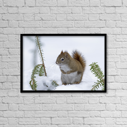"""Printscapes Wall Art: 18"""" x 12"""" Canvas Print With Black Frame - Animals by Philippe Henry"""