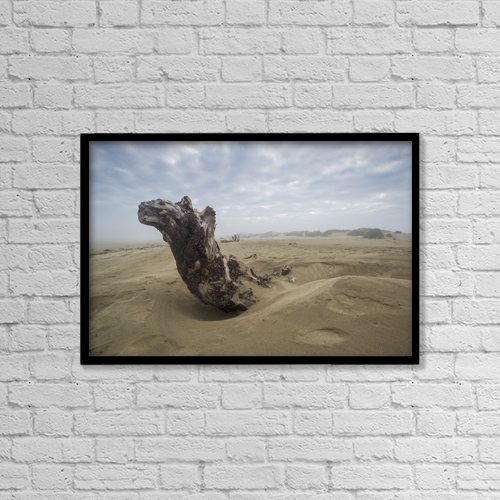 "Printscapes Wall Art: 18"" x 12"" Canvas Print With Black Frame - Driftwood Amongst The Dunes by Remsberg Inc"
