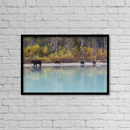 "Printscapes Wall Art: 18"" x 12"" Canvas Print With Black Frame - Animals by Rob Daugherty"